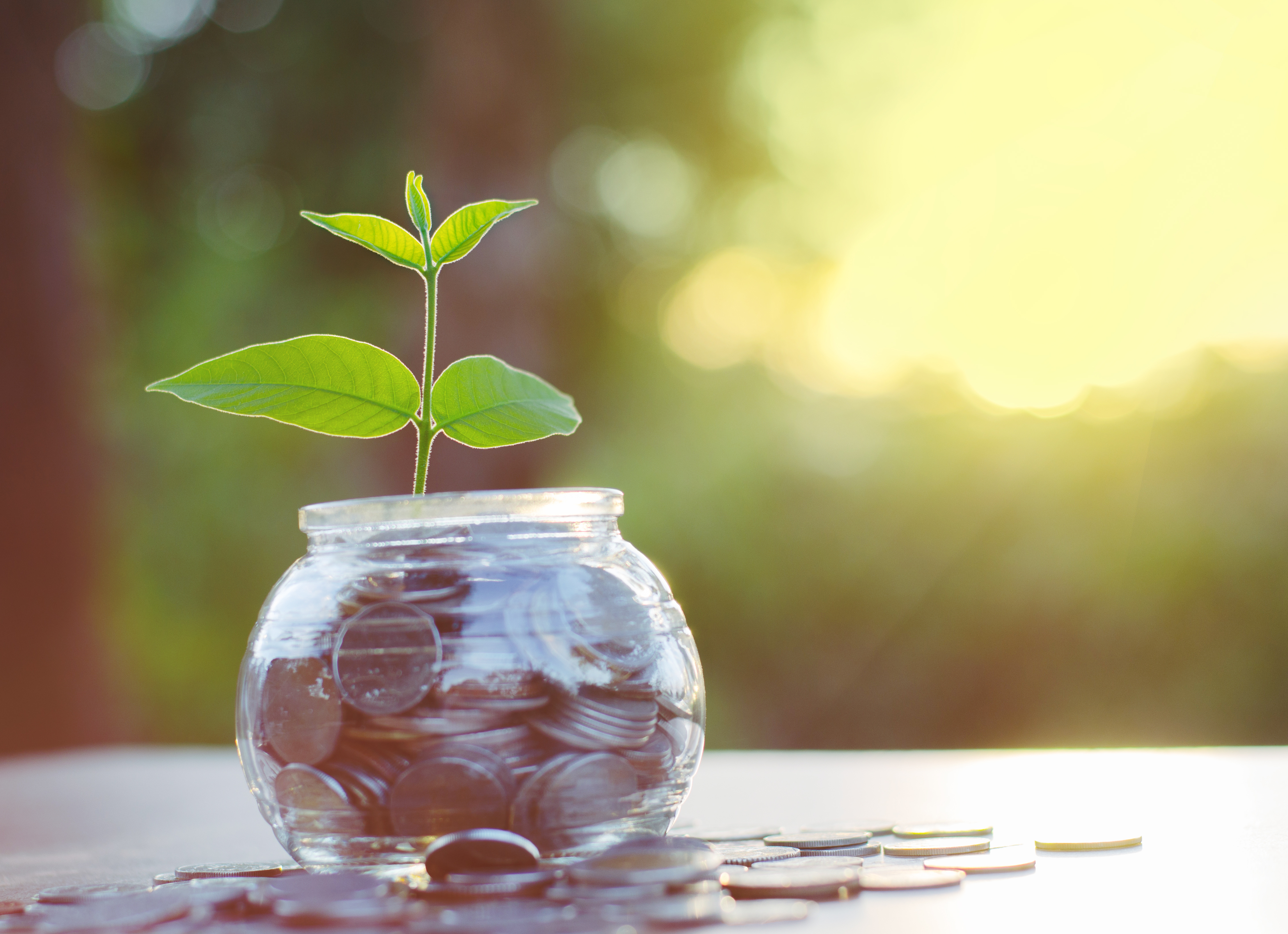Help Your Clients Grow with GROW