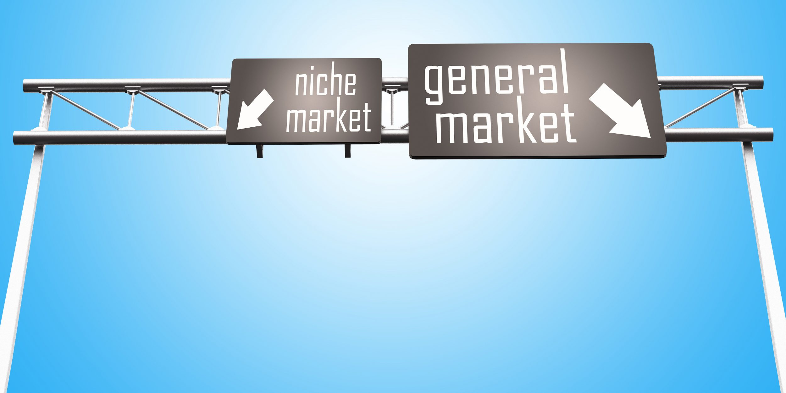 Defining Your Niche and Why You Need One